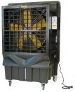 Охладитель воздуха Master BC 220 в Уфе